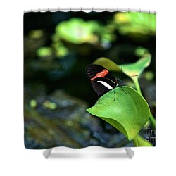 Red White Black Butterfly Shower Curtain