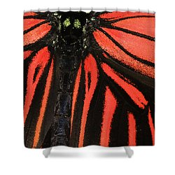 Shower Curtain featuring the photograph Red Wings by Sonya Lang