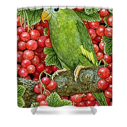 Redcurrant Parakeet Shower Curtain by Ditz