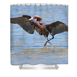 Reddish Tent Shower Curtain