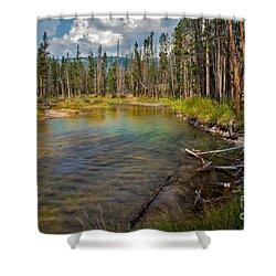 Redfish Lake Creek Shower Curtain by Robert Bales