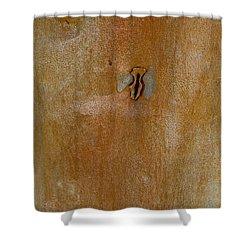 Redgum Tree Shower Curtain by Steven Ralser