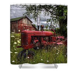 Reds In The Pasture Shower Curtain by Debra and Dave Vanderlaan
