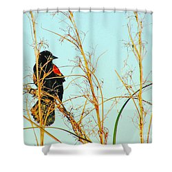 Redwing Lacassine  Shower Curtain
