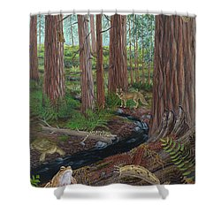 Redwood Forest Shower Curtain by Carlyn Iverson