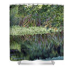 Shower Curtain featuring the photograph Reed Reflections by Kate Brown