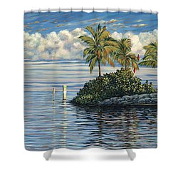 Reef Channel Shower Curtain by Danielle  Perry