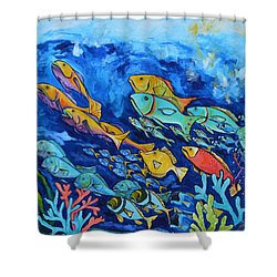 Reef Fish Shower Curtain