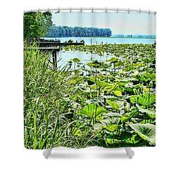 Reelfoot Lake Lilly Pads Shower Curtain