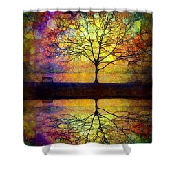 Reflected Dreams Shower Curtain