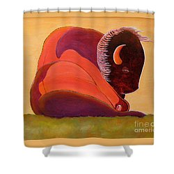 Reflecting Buffalo Shower Curtain by Joseph J Stevens