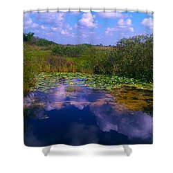 Reflecting In The Glades Shower Curtain