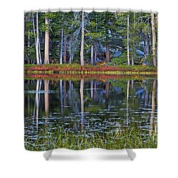 Reflecting Nature Shower Curtain by Duncan Selby