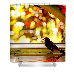Reflecting On Beauty Shower Curtain by Peggy Collins