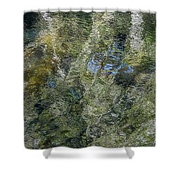 Reflection Art Shower Curtain by Roxy Hurtubise