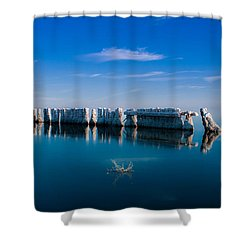 Reflection At Salton Sea Shower Curtain