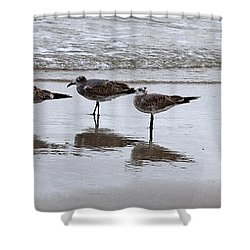 Reflection At The Beach Shower Curtain