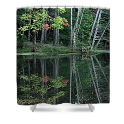 Reflection Shower Curtain by Bruce Patrick Smith