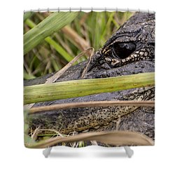 Reflection In His Eyes Shower Curtain by Penny Lisowski