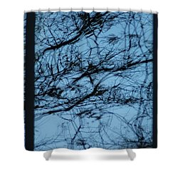 Reflection Shower Curtain by Joseph Yarbrough