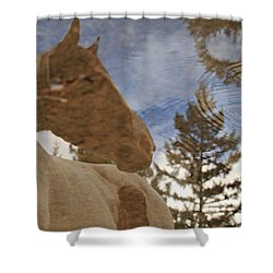 Upon Reflection Shower Curtain
