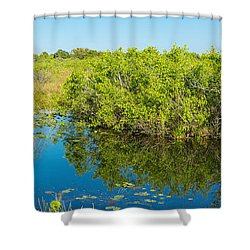 Reflection Of Trees In A Lake, Anhinga Shower Curtain