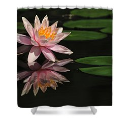 Reflection Shower Curtain by Penny Lisowski