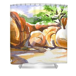 Reflections At Elephant Rocks Shower Curtain by Kip DeVore