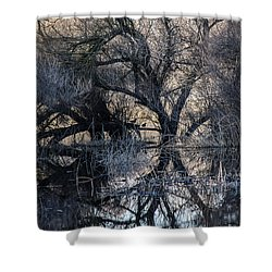Shower Curtain featuring the photograph Reflections by Brian Williamson
