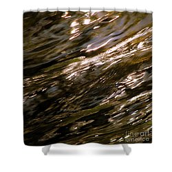 Reflections Shower Curtain by C Ray  Roth