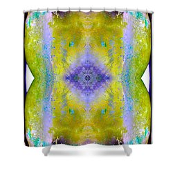 Shower Curtain featuring the photograph Reflections In Ice by Nina Silver