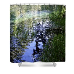 Shower Curtain featuring the photograph Reflections  by Mary Wolf