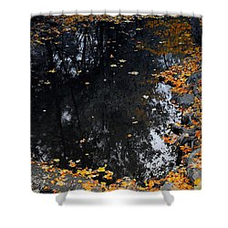 Shower Curtain featuring the photograph Reflections Of Autumn by Photographic Arts And Design Studio