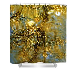 Reflections Of Trees In Gold Shower Curtain