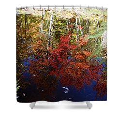 Shower Curtain featuring the photograph Reflections On Algonquin by David Porteus