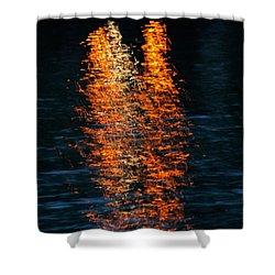 Reflections Shower Curtain by Pamela Walton