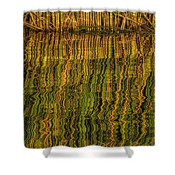 Shower Curtain featuring the photograph Reflections by Rob Graham