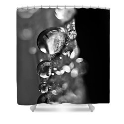 Reflective Rain Shower Curtain by Cheryl Baxter