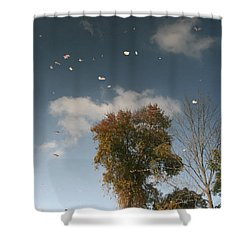 Shower Curtain featuring the photograph Reflective Thoughts  by Neal Eslinger