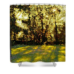 Refrectory Shower Curtain