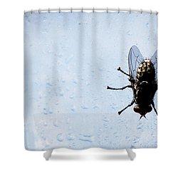 #refreshing Shower Curtain