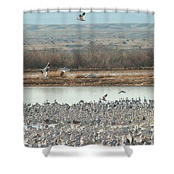 Refuge View 2 Shower Curtain by James Gay