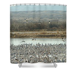 Refuge View  Shower Curtain by James Gay
