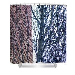 Regular Irregularity  Shower Curtain by Brian Boyle