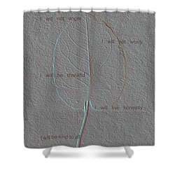 Reiki Principles Shower Curtain