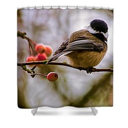 Relationships Are Like Birds Shower Curtain