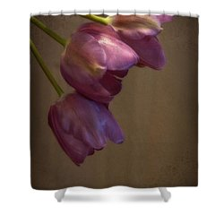 Shower Curtain featuring the photograph Remaining Glory by Lucinda Walter