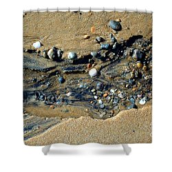Shower Curtain featuring the photograph Remants by Christiane Hellner-OBrien