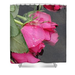 Shower Curtain featuring the photograph Remember by Tiffany Erdman