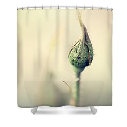 Remember Shower Curtain by Trish Mistric